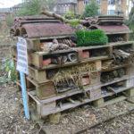 Bauanleitung für dein eigenes Insektenhotel