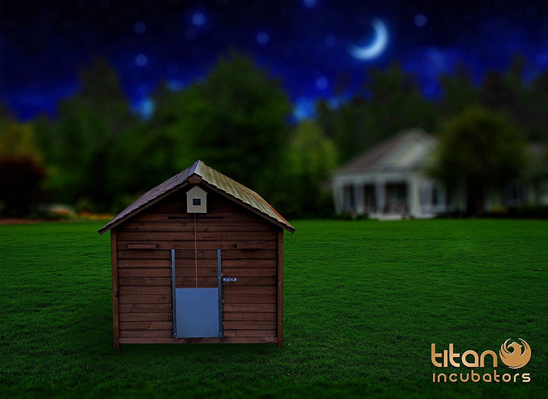 h hnerklappe titan incubators freigehege. Black Bedroom Furniture Sets. Home Design Ideas